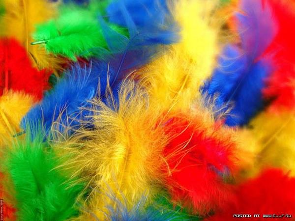 шарени пера